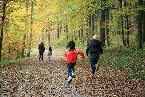 Send resten av familien på en skogtur, men ikke glem å utstyr dem med mobilen din!