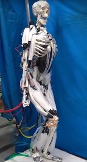 Slik ser roboten ut i fullfigur.