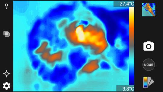 Det skal også ganske stor temperaturkontrast til omgivelsene til før det blir enkelt å lese noe fornuftig fra skjermen. Her tror jeg jeg har forsøkt å ta bilde av katten, men det kan også være et bilde av et tre eller ett av værvarslingens satellittbilder.