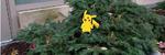 Les Her får Pikachu den ekte busken til å bevege seg