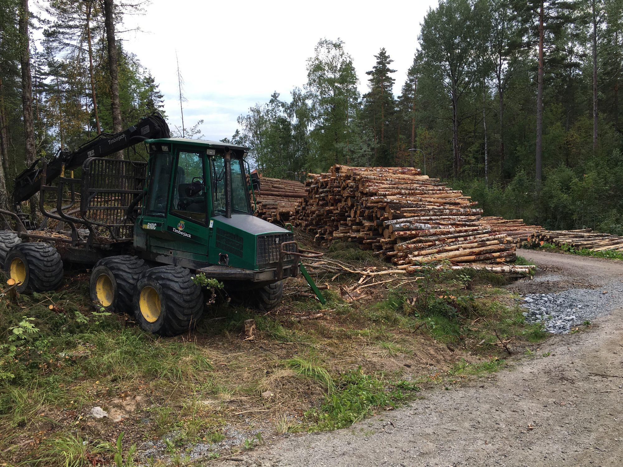 STORE MASKINER: Tømmeret stables etter at det er hugget ut av skogen langs Kongeveien.