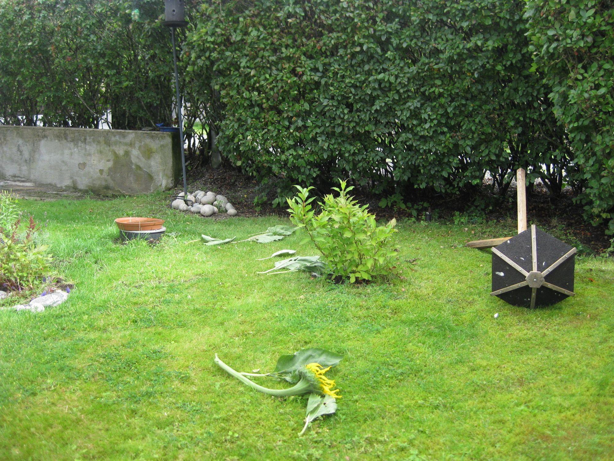 ET TRIST SYN: Slik så det ut i hagen til innsenderen av bildene. Noen har åpenbart herjet godt mens de var borte.