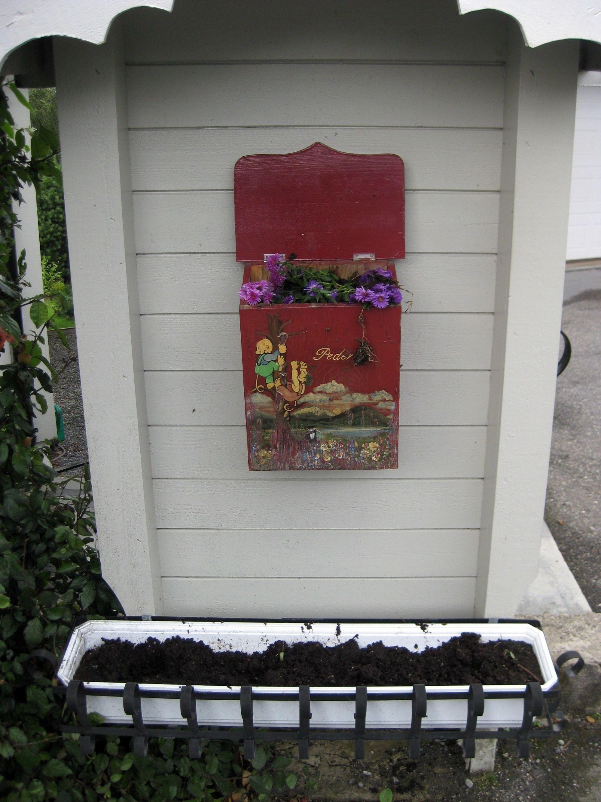 FIKK POSTKASSEN BEPLANTET: Slynglene hadde røsket opp blomstene og plantet dem i postkassen også.