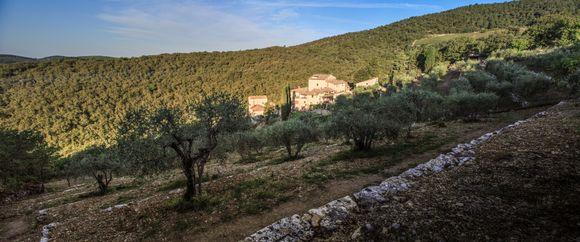 Monteraponi-eiendommen er på 200 hektar men bare 12 av dem er vinmarker.