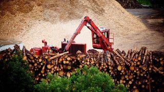 Myndighetene tror prisen på avansert biodrivstoff blir mer enn doblet. Statoil frykter det blir enda verre