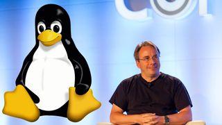 «Hobbyprosjektet» Linux er 25 år