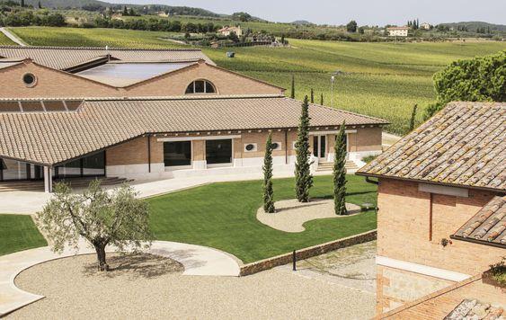 Montepulciano-eiendommen er den største med i alt 84,5 hektar vinmarker.