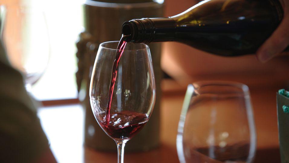 Smak over hundre viner: amarone, ripasso og valpolicella