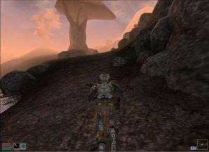 Et velkjent skue i Morrowind.