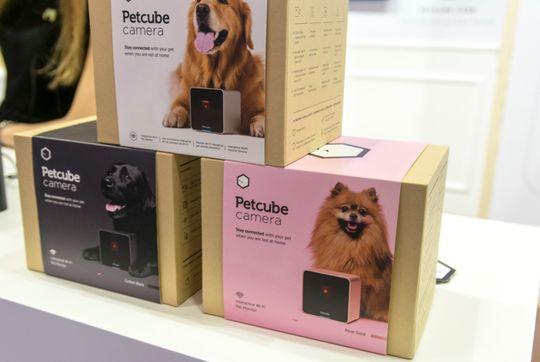 Første generasjon Petcube-produkter er fortsatt i salg, men snart dukker Petcube Play opp med bedre funksjonalitet.