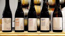Må prøves: Californisk pinot noir i virkelig toppklasse