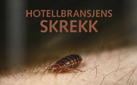 Les Hotellmagasinet digitalt