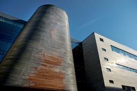 Seks år gamle Vågen skole har allerede store skader på den ubehandlede trefasaden.