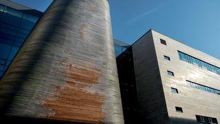 Skulle unngå vedlikehold ved å bruke ubehandlet tre - nå råtner fasadene