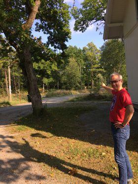 HER GÅR LØYPEN: Starten er ved Solheim Grendehus, og deretter går løpet inn i en av Oppegårds flotteste naturområder.