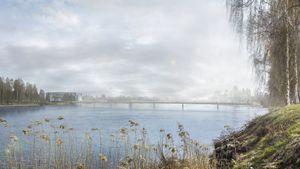 Vant brukonkurranse i Sverige