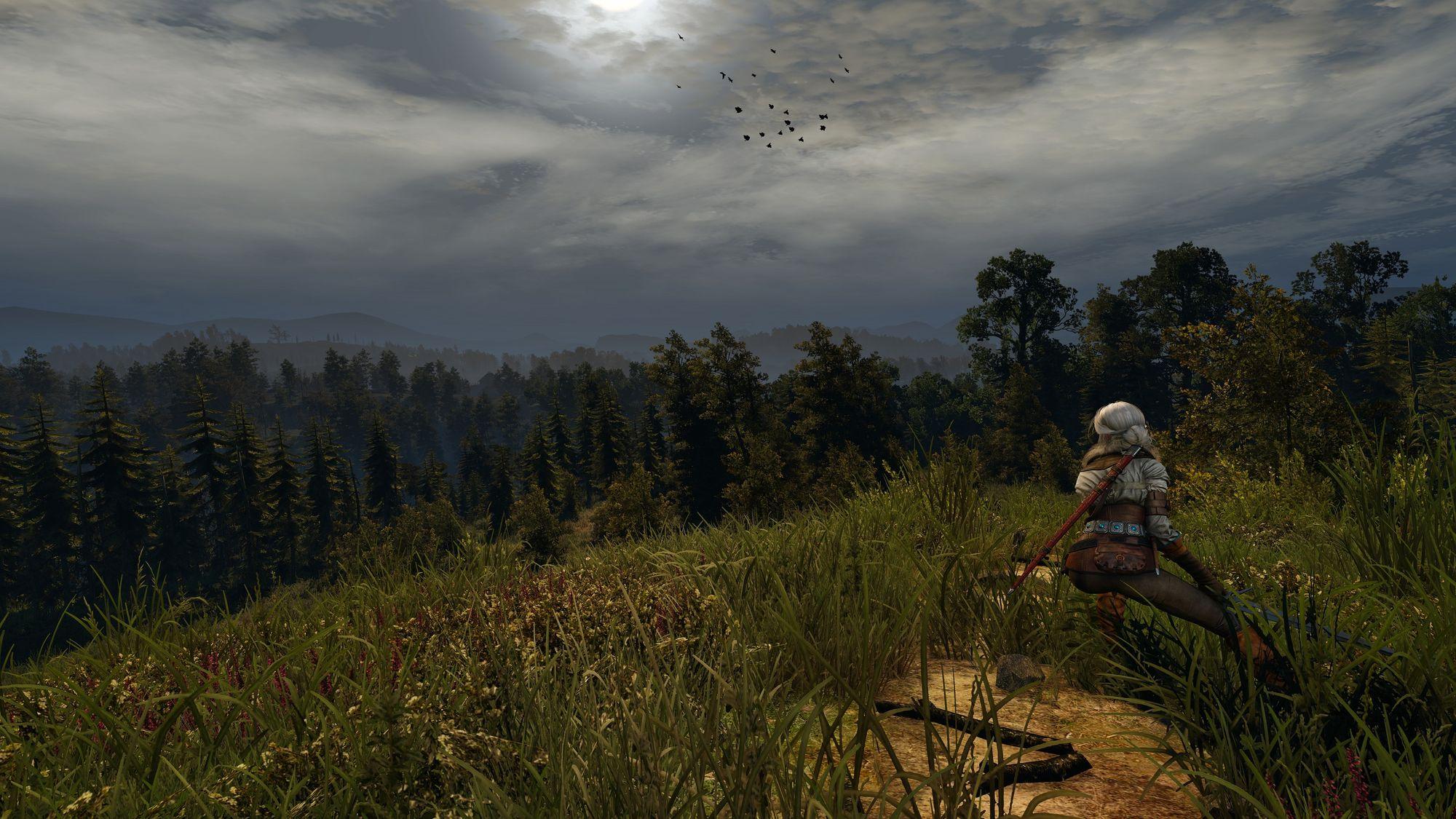 Nokre få modifikasjonar kan drastisk endre utsjånaden til spelet.