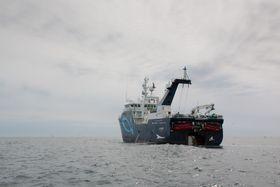 Tråleren Molnes har fisket hvitfisk i Nordsjøen etter ombyggingen. Nå foregår fisket i Barentshavet. Molnes skal drive helårsfiske.