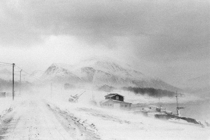 00596 09? 21.02.15 Tuss¿y? Tuss¿y ligger pŒ yttersida av Troms, og har en hŒndfull fastboende. Det er stor uenighet om hvor mange innbyggere det er pŒ ¿ya, og antallet varierer etter hvem av innbyggerne du sp¿r. Noen mener det er fem innbyggere, noen sier det er sju og andre igjen hevder de er ni. PŒ femtitallet var folketallet oppe i seksti, men gradvis har folk flyttet n¾rmere skole, jobb og en mer praktisk hverdag. Dette er en dokumentar om de som har valgt Œ bo pŒ Tuss¿ya.  Bildene er fotografert i 2014 og 2015. Tuss¿y ligger i Kattfjord utenfor Kval¿ya i Troms¿ kommune.