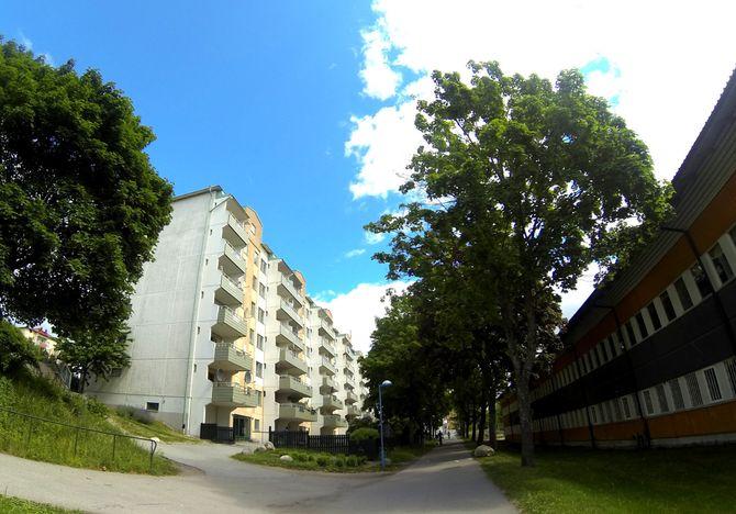 Grønt og åpent. Rinkeby har mange trær, parkaktige områder, fine fotballbaner og variert bebyggelse. Folk som sammenligner Rinkeby arkitektonisk med de massive betongørknene man for eksempel finner i storbyer som Paris, har enten aldri sett stedene de snakker om, eller driver bevisst feilinformasjon. (Foto: Fredrik Drevon)
