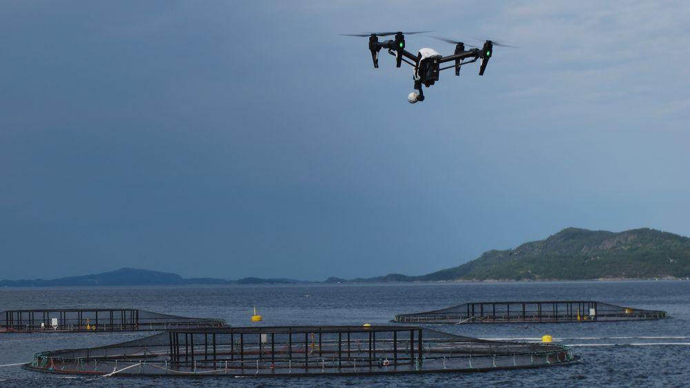 Roboter med robotsyn kan hjelpe til med å overvåke fiskemerder.