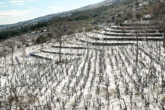 Snø er ikke uvanlig i Santo Spirito.