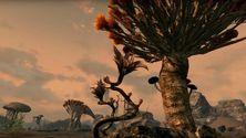 Morrowind i Skyrim-drakt vises frem i ny video
