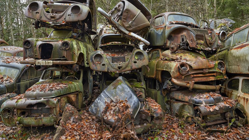 Gamle bilvrak stablet i stabler. Bilkirkegård i skog. Vrak. Forbruk. Gamle biler. Forfall. Naturen tar tilbake. Bilopphuggeri. Bilopphoggeri. Rustne biler. Rust. Høst. Forsøpling av naturen. Skrot.  Foto: © Bård Løken / NN / Samfoto