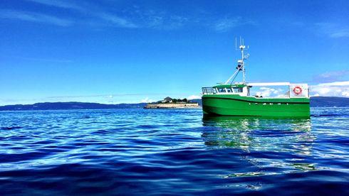 Vil elektrifisere 3000 fiskebåter de neste ti årene. Fiskarlaget tror på maks 100