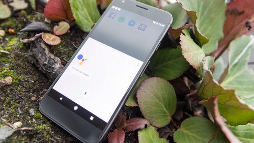 Samsung og Apple bør se opp for Googles Pixel