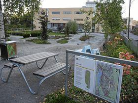 HER KAN DET BLI ENDRINGER: Dette er Generasjonsparken bak Kolben slik den ser ut i dag.
