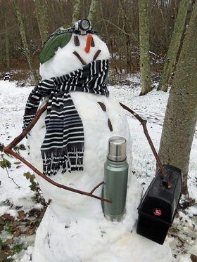 BLIR DU MED OG BYGGER SNØMANN?: Det er bare å synge som i Frost, og gjøre klart til å bygge snømann og stå på ski igjen!