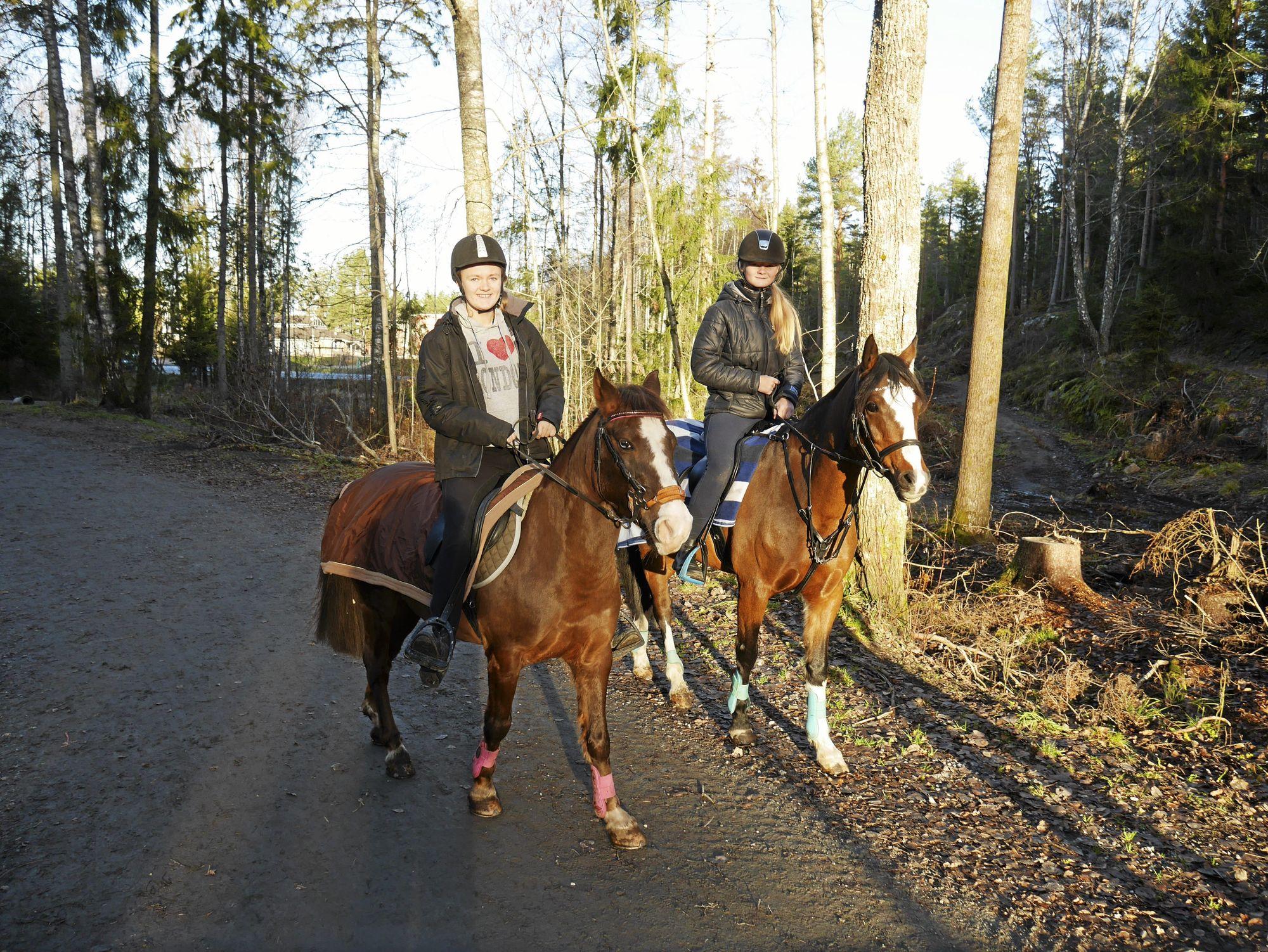 KOMMER IKKE GJENNOM: – Før kunne hestene gå opp i skogen. Nå kommer de ikke gjennom kvistene, sier Emilie Sanders og Natalie Bay.