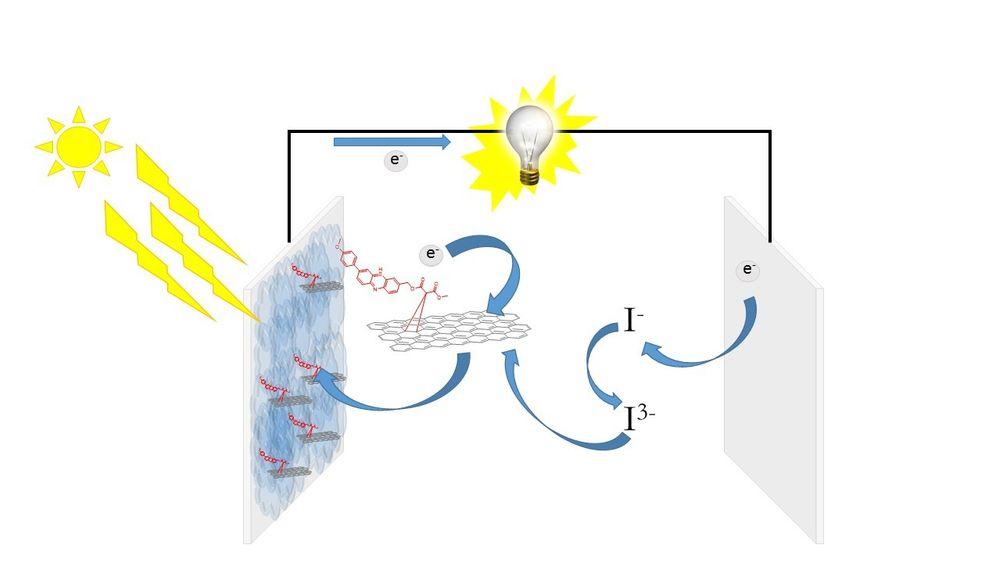 Organiske solceller består av rimelige materialer og kan produseres billig. Men de har fortsatt for lav virkningsgrad og er for ustabile til å konkurrere med for eksempel silisium-solceller.  Se brødteksten for forklaring av prosessen.