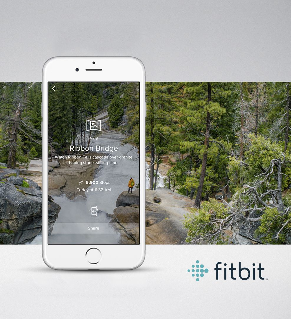 Fitbit Adventure