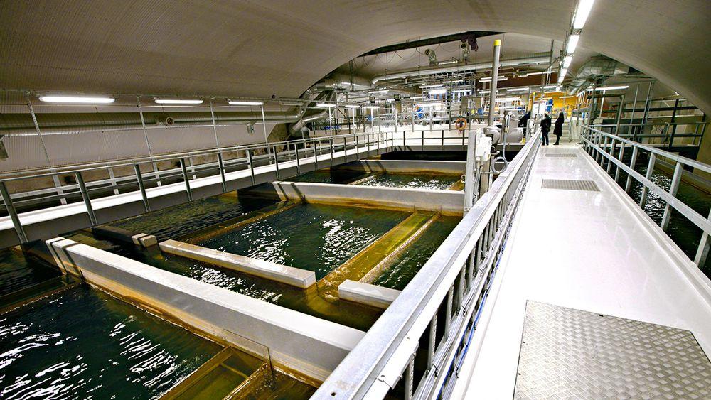 Oset vannrenseanlegg i Oslo behandler 3000 liter vann hvert sekund fra Maridalsvannet, så det skal tilfredsstille gjeldene forskrifter. Det hjelper lite om forurensinger lekker inn i nettet på vannets vei fra fjellhallene til tappekranene i hus og hjem.