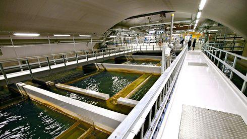 Vann- og avløpsnettet forfaller: Stadig flere blir syke av drikkevannet