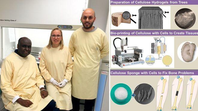 De vil printe et nytt bein til deg - av plantemateriale