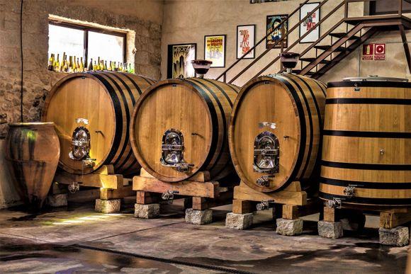 Fra Anzivinos vinkjeller.