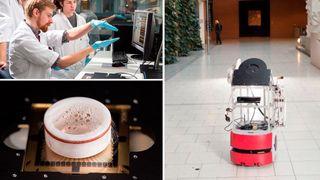Forskere ved NTNU utvikler en robot som skal styres av levende hjerneceller