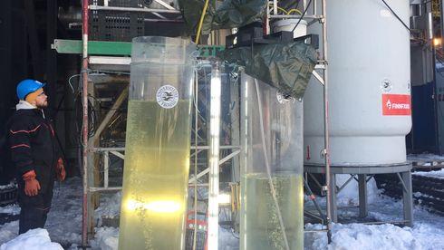 Smelteverket i Troms bruker restvarmen til å dyrke alger – som spiser CO2