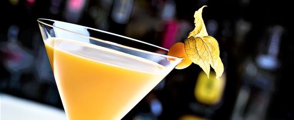 Physalis Martini