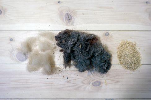 Noe av det støvsugerne har fått å bryne seg på: Hundehår, støv og riskorn.
