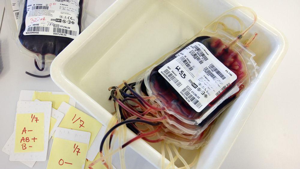 Blodposer ved blodbanken på St. Olavs Hospital i Trondheim. Foto:  Gorm Kallestad  / SCANPIX