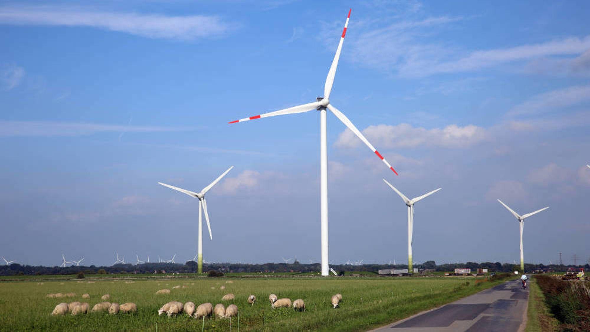 Vindkraftutbyggingen i Nord-Tyskland gjør at eierne av vindmøllene får penger for å skru av møllene når produksjonen er for høy.