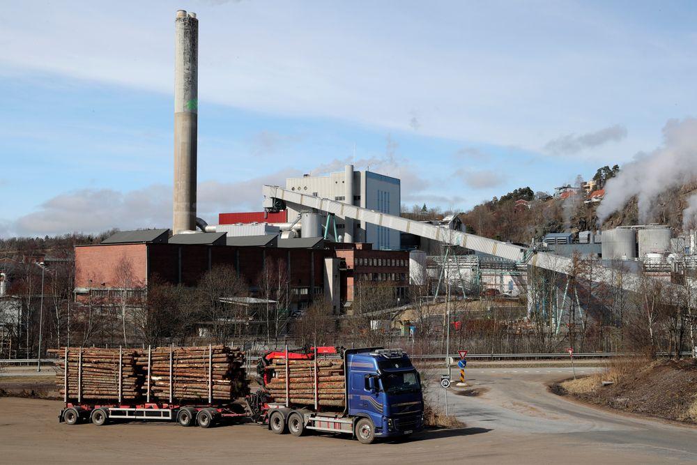 Underdimensjonerte broer er blitt flaskehalser for tømmertransporten. Nå skal flere broer som er for svake, rustes opp.