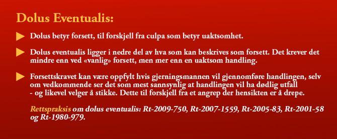 Dolus Eventualis