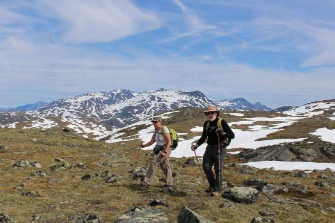 TYIN: Jackie Dumazert og Jacques Domen på utsikta Skinneggi ved Tyinholmen.