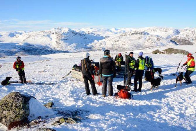 PÅ TYIN: Norske Redningshunder er på plass til ei heil veke med trening og prøver for å få fleire godkjende lavinehundar.