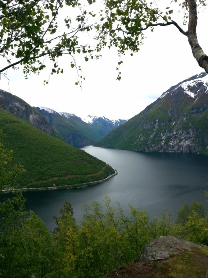 SKARPENOR: Mange likar stien til Skarpenor og Blåberg-gruvene med utsikt mot Årdalstangen og Årdalsvatnet